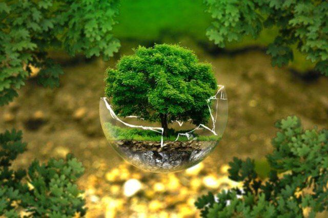 Inwestycja w ekologię